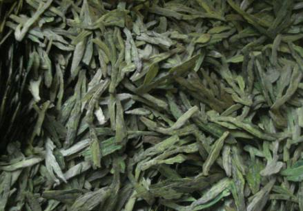 安吉白茶与龙井有什么区别?