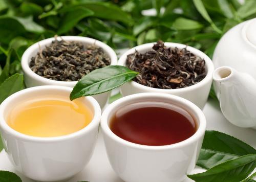 茶一直以来被人们认为是我国保障修复的分类。红茶、绿茶、乌龙茶等,它们均是使用山茶树植物的叶子制成