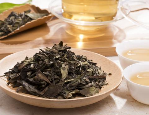 普及中国白茶知识!