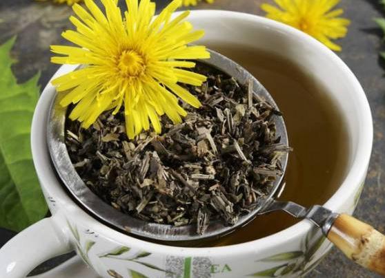 蒲公英茶有什么功效及作用!