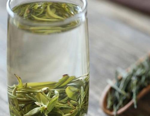 为什么有些人喝茶的时候容易醉茶?