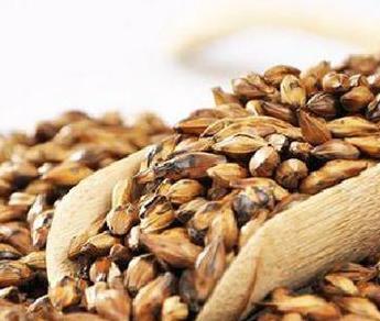 大麦茶主要是以大麦为主,添加一些调味剂,后经精心炒制而成。大麦茶味道香浓,不少人都爱喝。并且