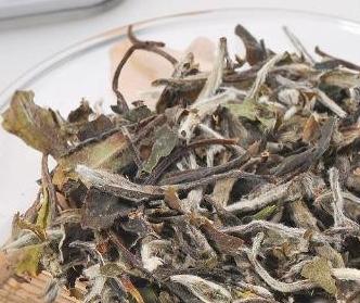 白露茶属白茶的哪一种呢?