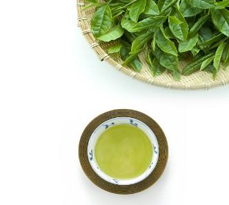 抹茶是什么?
