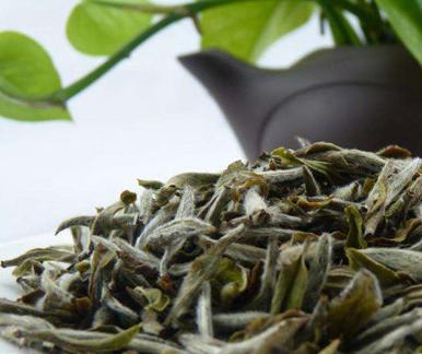 白茶为何在放很长时间后会变成红色呢?