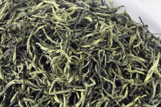 绿茶中的茶王:信阳毛尖