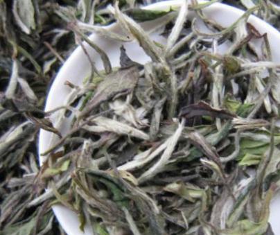 哪种白牡丹茶最有收藏价值呢?