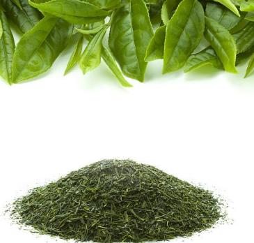 喝茶可以排毒吗?