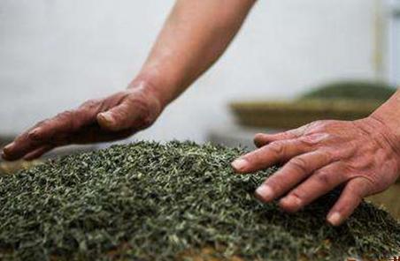 我们都知道,绿茶一类的茶叶种类丰富多样,数不甚数,而凌螺春茶就是绿茶中的一种,它是产自广西凌云县
