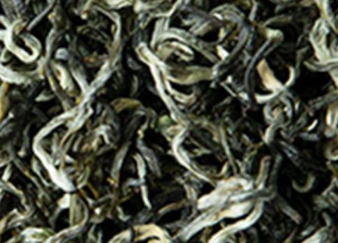 信阳毛尖和绿茶哪个好?信阳毛尖就不用说了,本身就是名优绿茶,位列中国十大名茶之一。绿茶是信阳毛尖