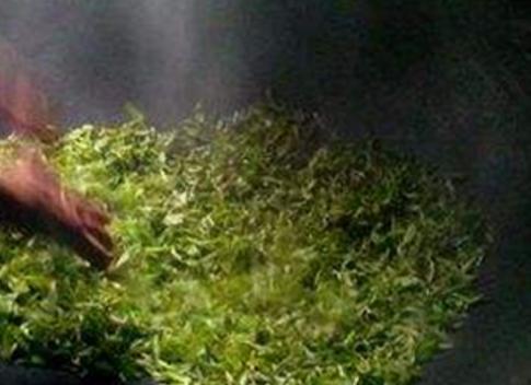 沩山毛尖,湖南省宁乡县特产,中国国家地理标志产品。碧螺春是中国传统名茶,中国十大名茶之一,属于绿