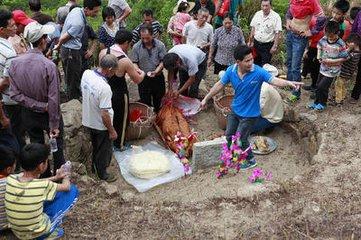 广东的清明节习俗  在许多传统节日逐渐走向淡化境地的现代社会,清明节祭祖习俗却还代代相传,并穿越时空