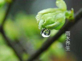 """每年公历的2月18~20日为雨水节气。""""斗指壬为雨水,东风解冻,冰雪皆散而为水,化而为雨,故名雨水。"""""""