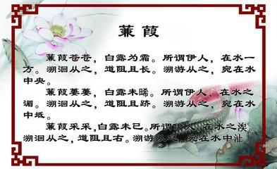 """白露时节气温降低,露水开始出现,此时的诗词歌赋和民间谚语也多围绕""""露水""""而展开。《蝶恋花》  【"""
