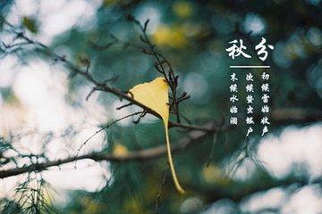 """秋分的意思  每年9月23日左右秋分。秋分是什么意思?古书《春秋繁露·阴阳出入上下篇》记载:""""秋分者,阴"""